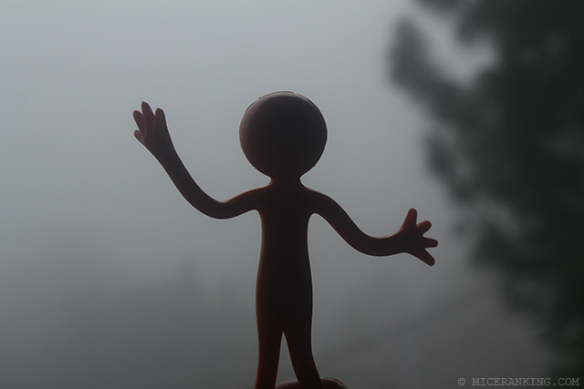 Stickman in Meri Phuensom Resort fog