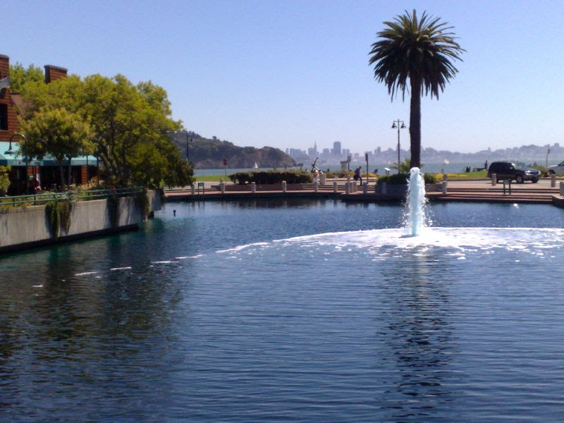 Bridge View of Fountain and SF