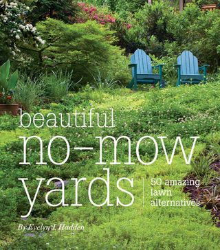 Blue Planet Garden Blog: We don't need no stinkin' lawn