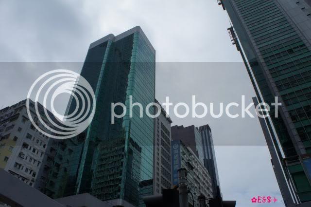 photo 8-18_zpse23e7165.jpg
