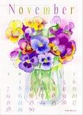 November -- Anemone