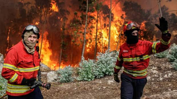Image result for portugal fires 68 dead