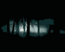 Gothic Forest by kuba - Dark gothic forest landscape