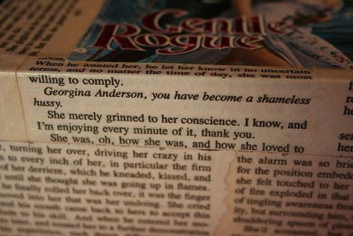 Trashy Romance Novel Box