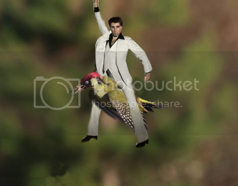 photo 04 Weasel Riding Woodpecker_zpsnv61r811.png