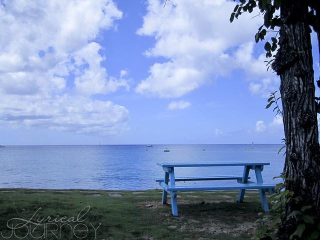 Barbados 20111114_0105 WM