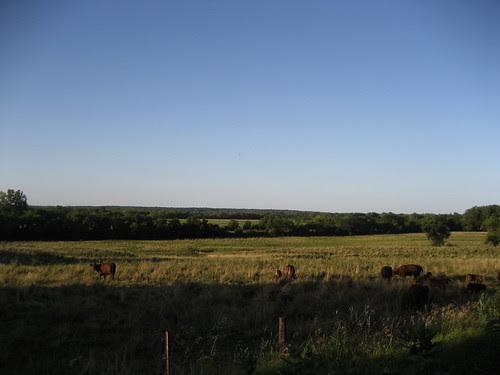 pretty scenery