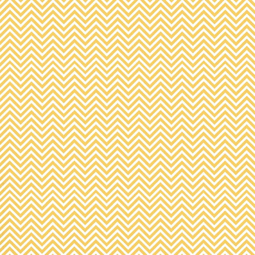 5 mango_ BRIGHT_TIGHT_ CHEVRON_350dpi 12x12_plus_PNG_melstampz
