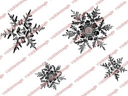 Visible Image Enchanting snowflakes stamp