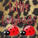 Little Ladybugs