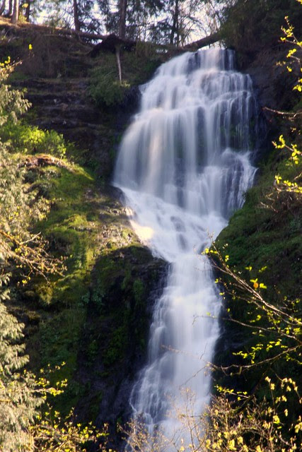 Munson Creek Falls