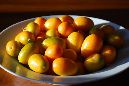 candied kumquats 2