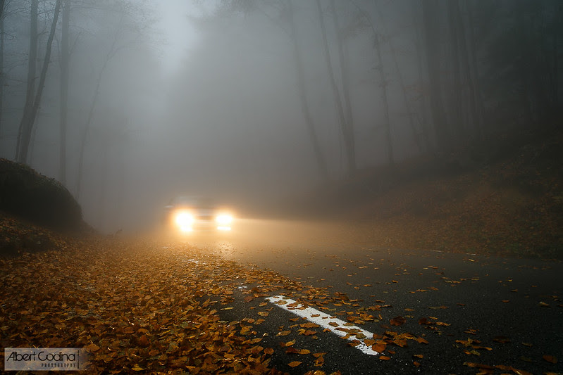 Cotxe en la boira | Car in the fog