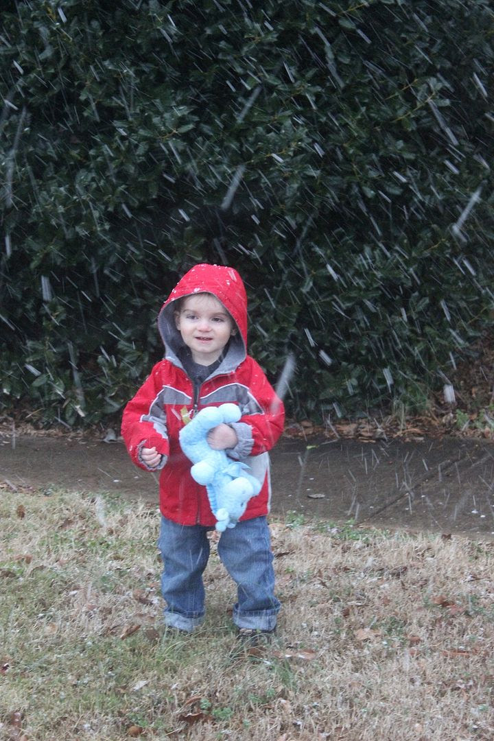 photo snow5_zps321da7cc.jpg