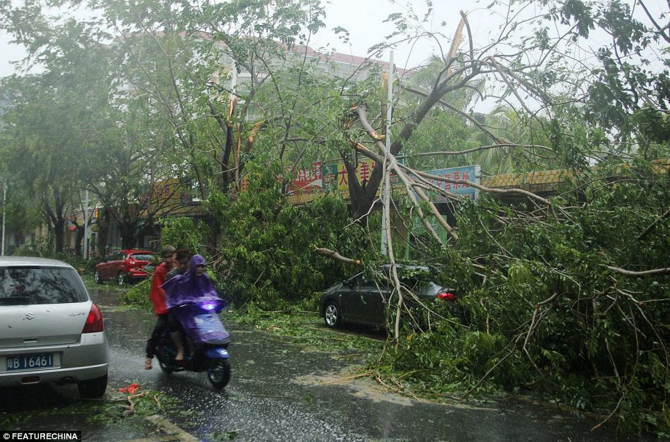 This afternoon, the Typhoon Haiyan - believed to be the strongest storm to ever hit land - made landfall in Sanya in south China's Hainan province.