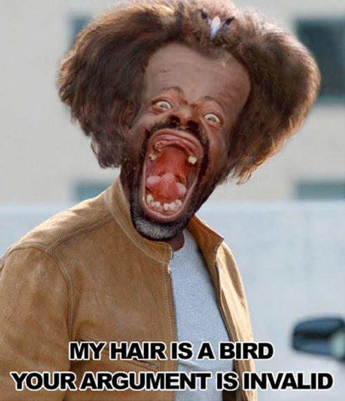 Download image Nicolas Cage My Hair Is A Bird PC, Android, iPhone and