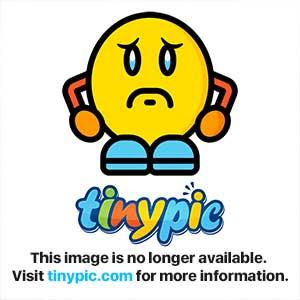 PyLoris 3.2