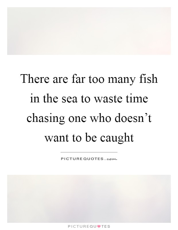 There Are Far Too Many Fish In The Sea To Waste Time Chasing One