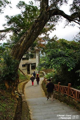溪口吊橋步道