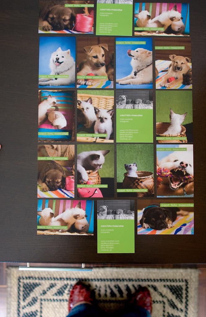 Llegaron mis tarjetas de presentación!
