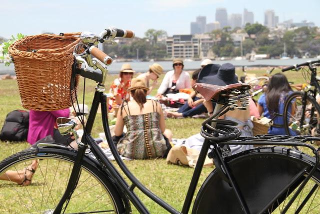 the bike picnic