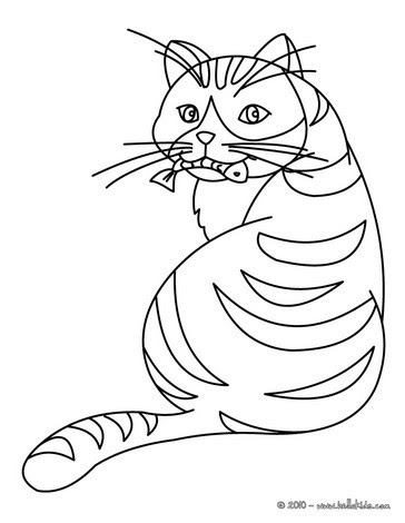 Cat eating a fish coloring pages - Hellokids.com