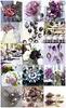 Pilihan warna tema perkahwinan / Wedding theme