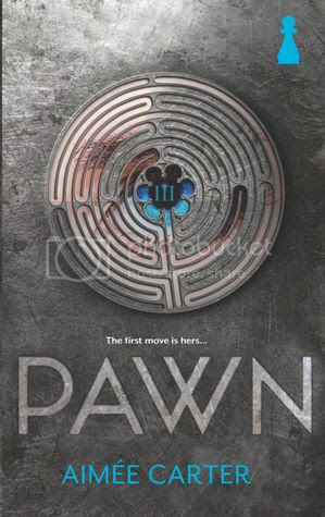 https://www.goodreads.com/book/show/10838787-pawn
