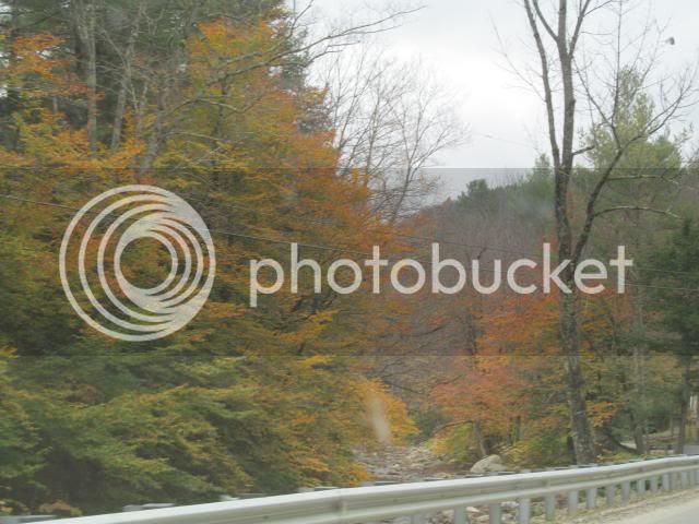photo 2012-10-09014954_zps209bd1e2.jpg