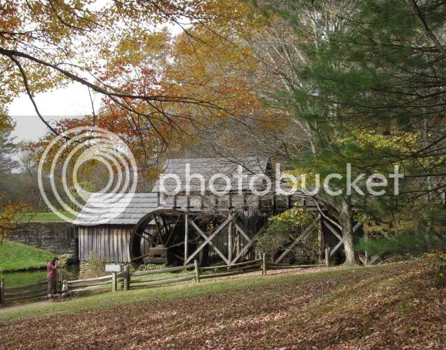 photo autumnaroundhome026.jpg
