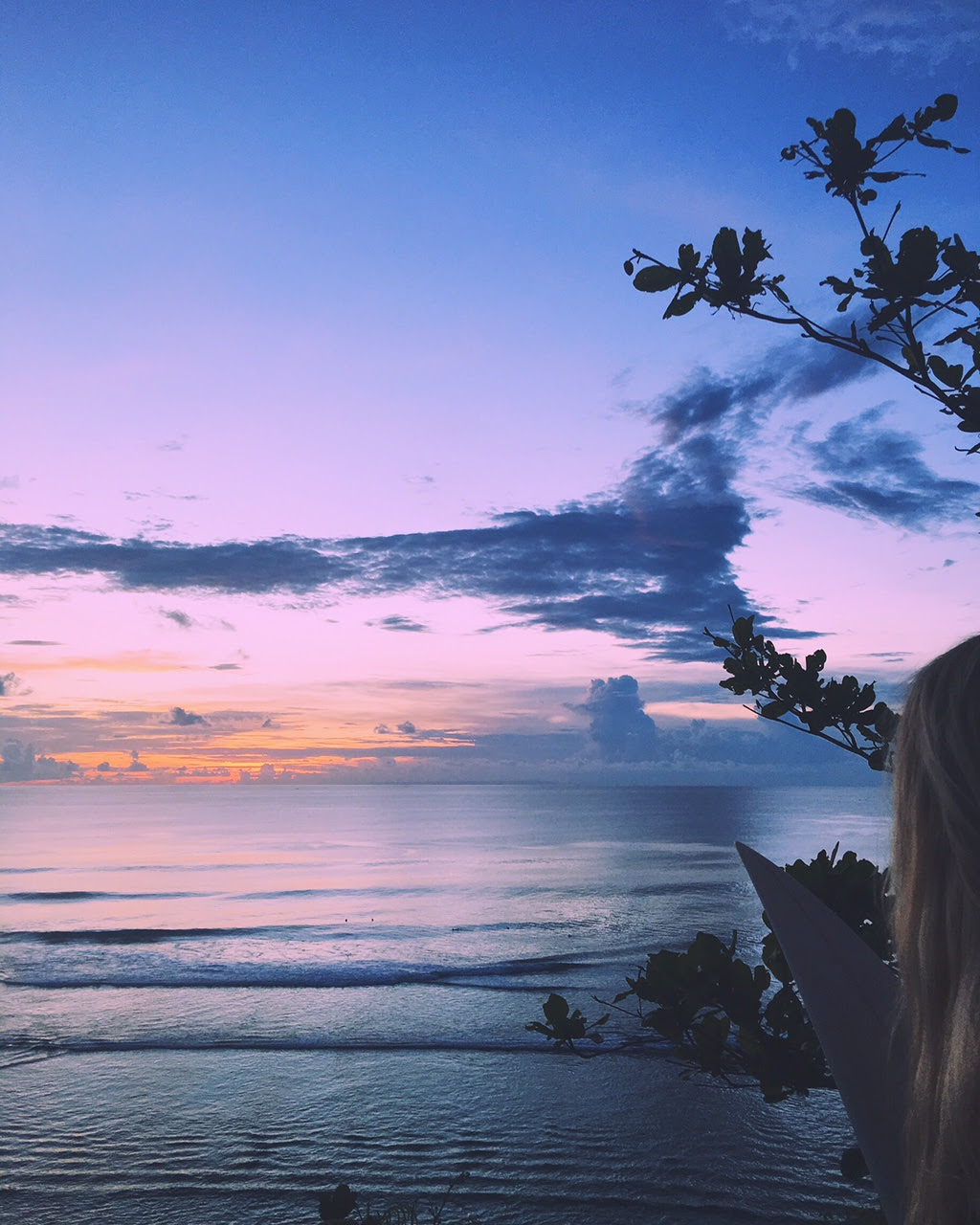 Things to do in Bali and Indonesia Travel Map: Iii Bali  Emily Salomon