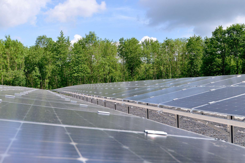 В Нидерландах открыли крупнейшую в Европе солнечную станцию на основе двусторонних солнечных панелей