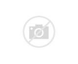 Alternative Fuel Use Images