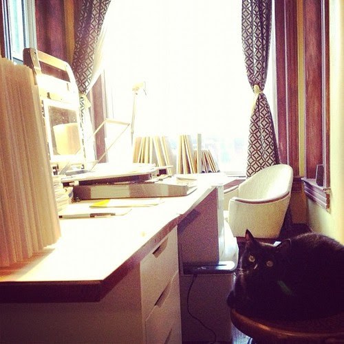 This afternoon I acquired an assistant in my printmaking studio.