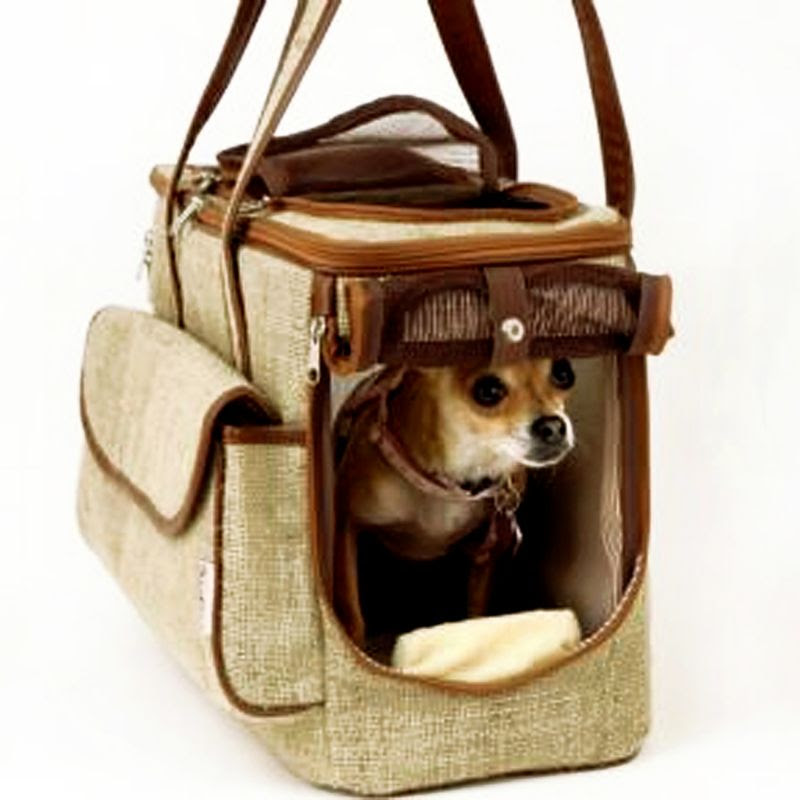 Eco-Friendly Pet Carrier