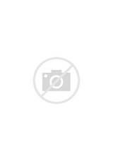 Brownie Uniform Pictures