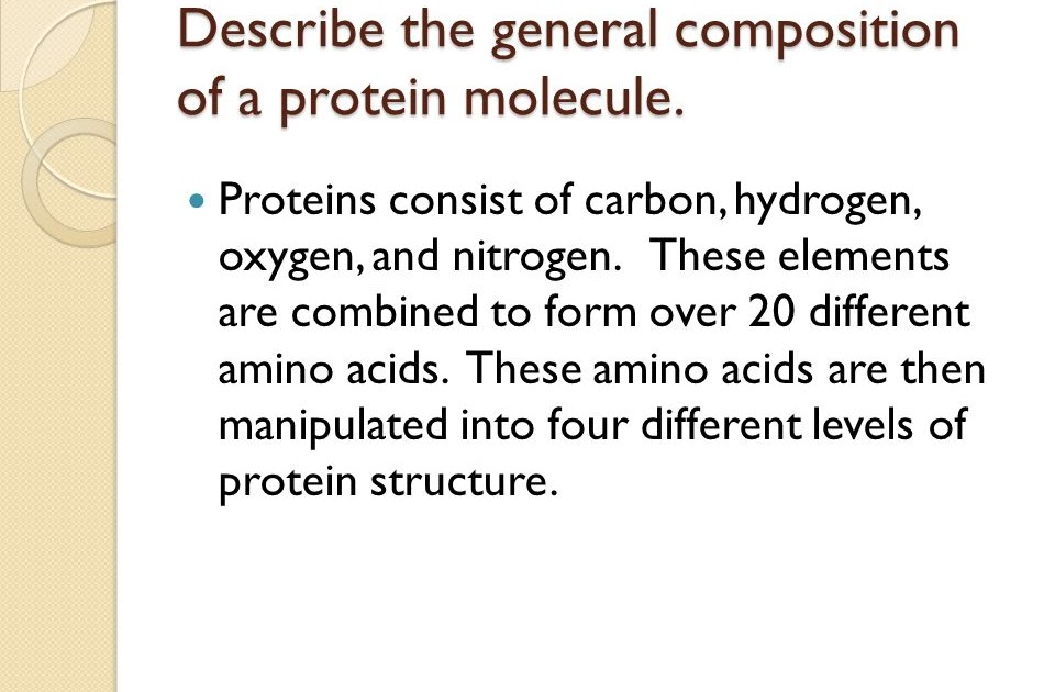 General Composition Of A Protein Molecule - ProteinWalls