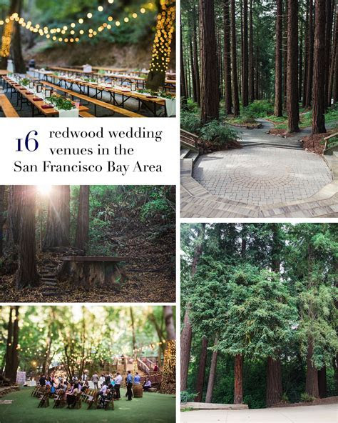 16 Amazing Wedding Venues with Redwoods in the San