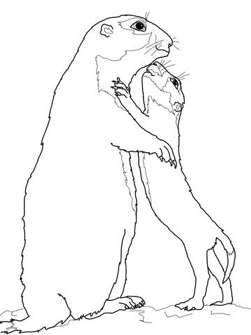 Dibujo De Perrito De Las Praderas Bebé Con Su Madre Para Colorear