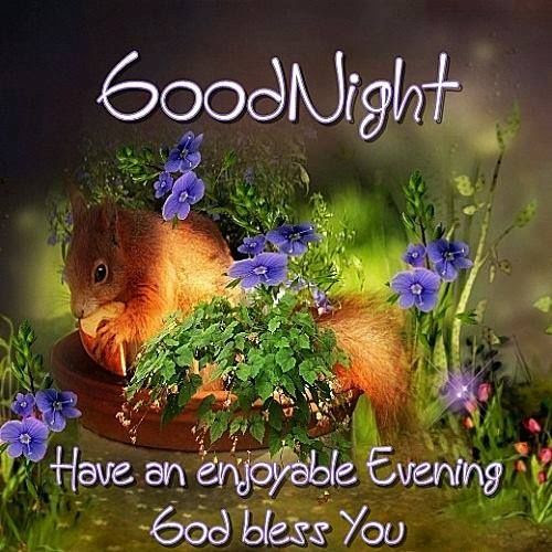 Goodnight Have An Enjoyable Evening God Bless You Pictures Photos