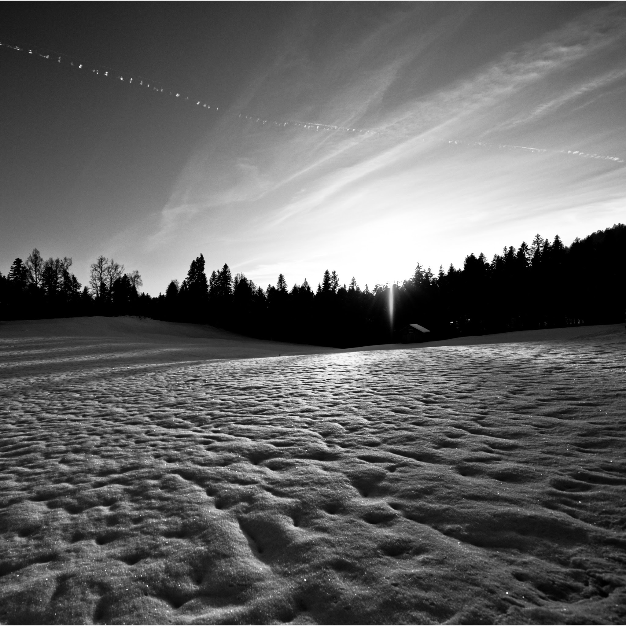 Black And White Winter Landscape Ipad Wallpaper