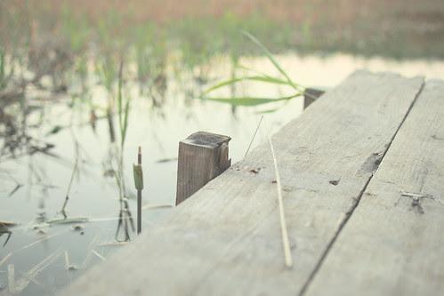 2012年11月1日 PB010332 アートフィルター(デイドリーム