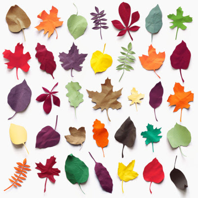 juneberry:  A collection of paper leaves.