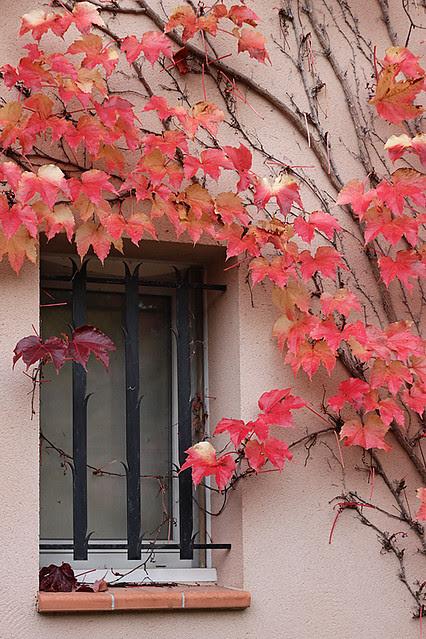 Autumn20124