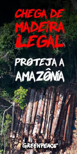 Chega de madeira ilegal