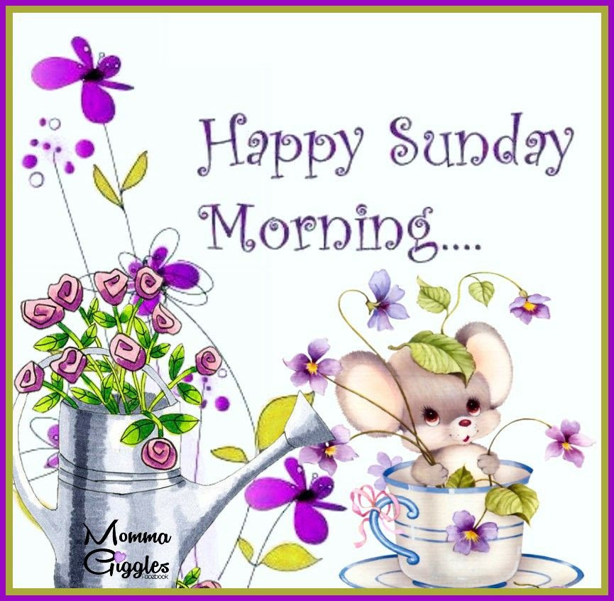 Happy Sunday Morning Pictures Photos And Images For Facebook