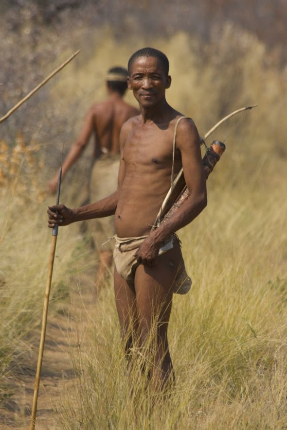 Bushman standing with bow, arrow and walking stick on a hunt. Ju/'hanse San people, or as they are more commonly known, the Bushmen, near Tsumkwe, eastern Namibia.