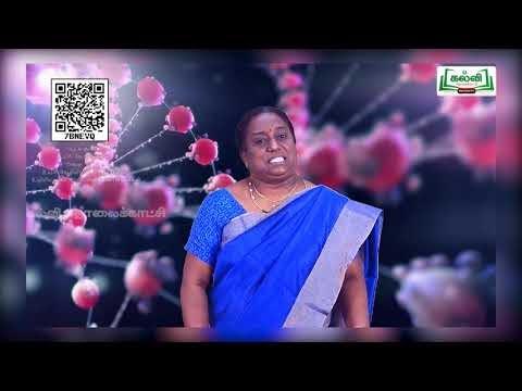 11th Bio Chemistry உயிர் மற்றும் செல் உயிரியலில் அடிப்படை அலகு 1 Kalvi TV