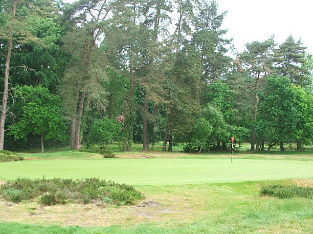 3rd green from rear