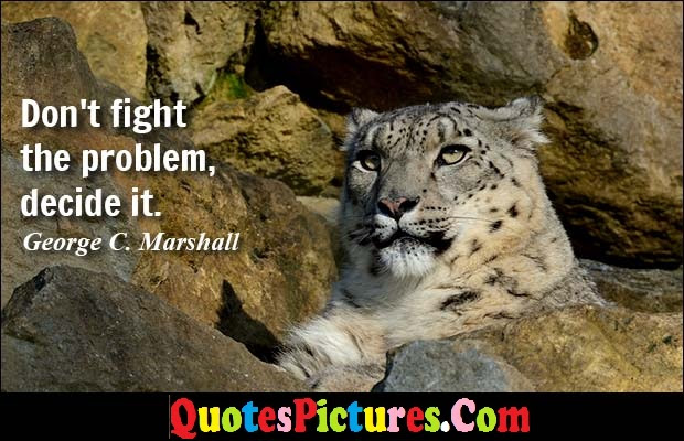 Brillient Dog Quote Dont Fight The Problem Decide It George C